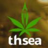 t.h.sea cannabis