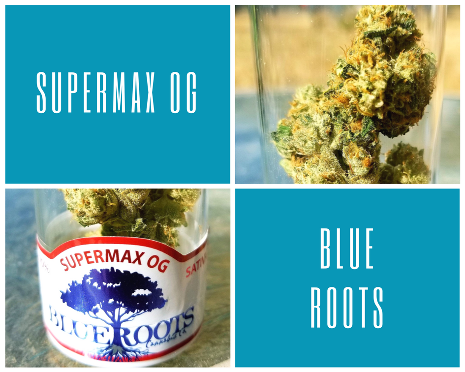 Supermax OG by Blue Roots