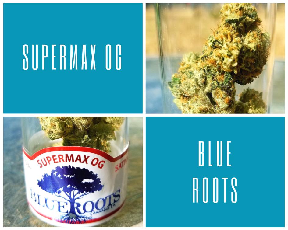 Supermax OG by Blue Roots