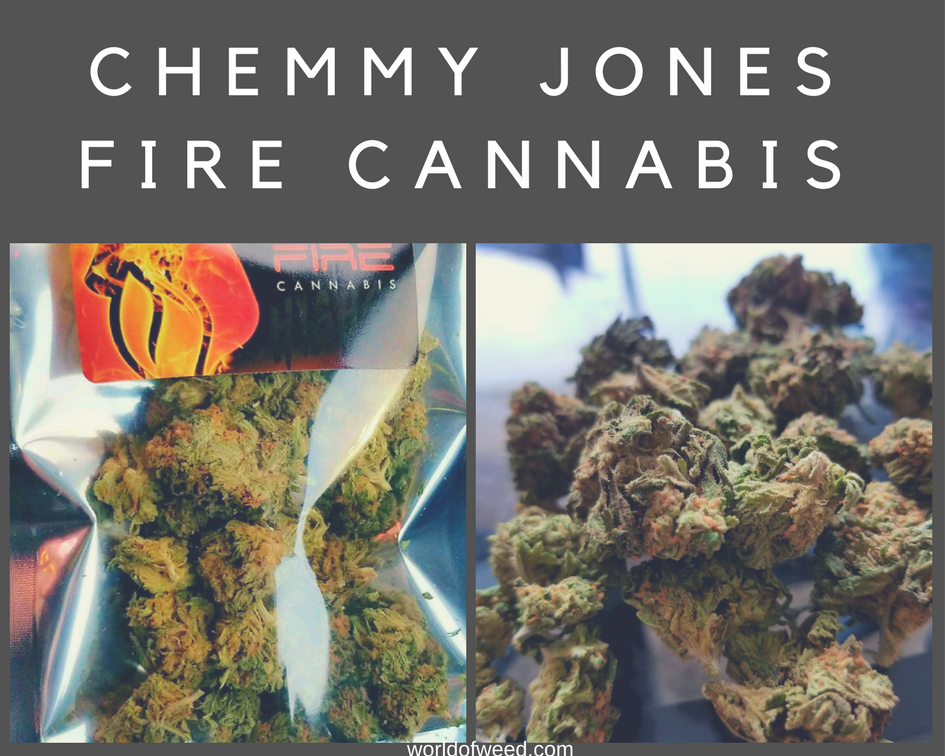 Chemmy Jones by Fire Cannabis