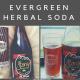 Evergreen Herbal Soda
