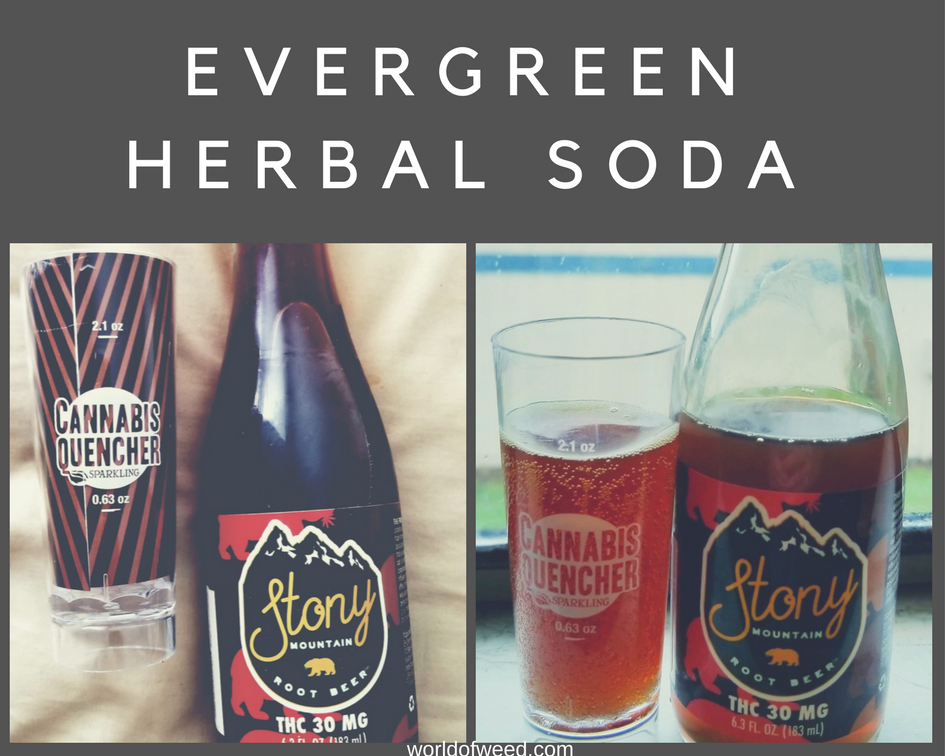 Evergreen Herbal Soda