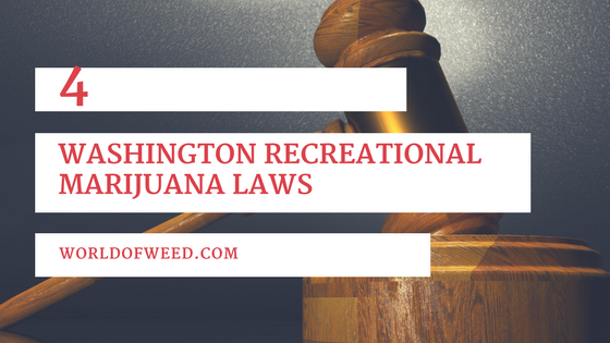 4 Washington Recreational Marijuana Laws Every Stoner Should Know
