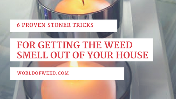 6 Proven Stoner Tricks for Getting the Weed Smell Out of Your House