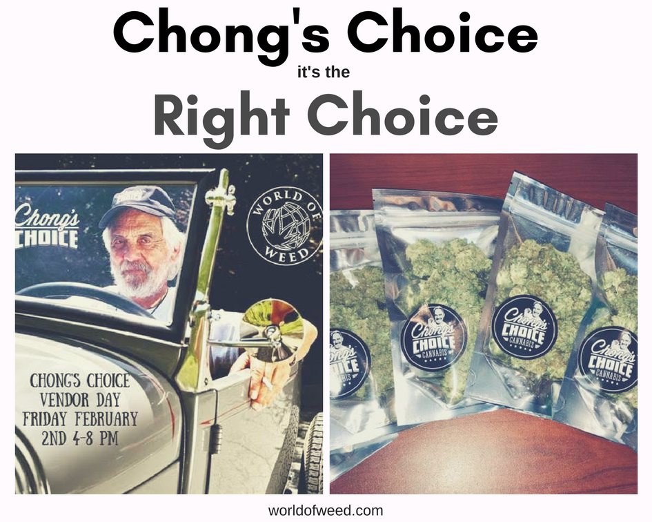 Chong's Choice is Always the Right Choice