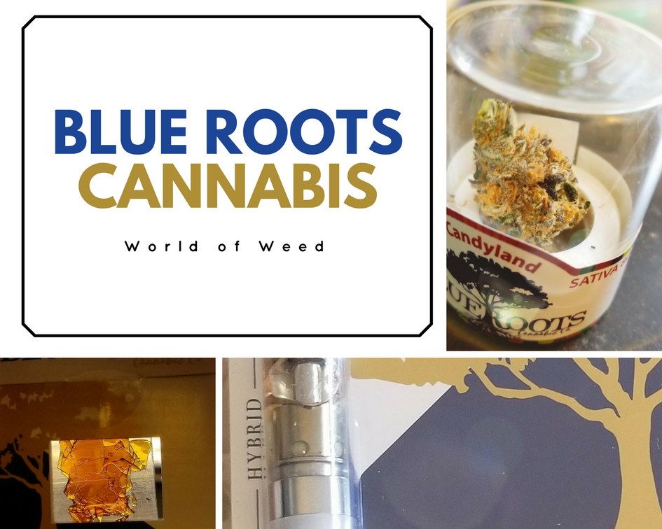 Blue Roots Cannabis: Flower, Shatter, and Distillate