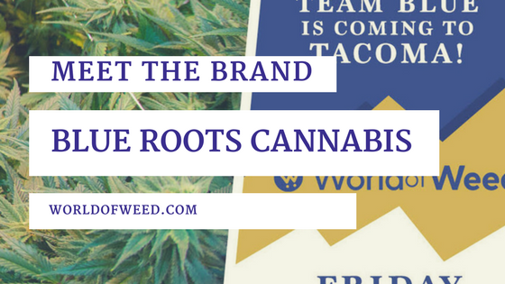 Meet the Brand: Blue Roots Cannabis