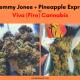 Meet the Vendor: Fire Cannabis