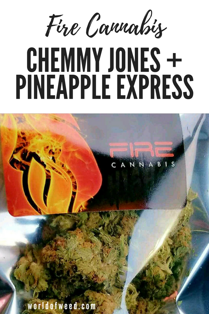 fire cannabis chemmy jones pineapple express