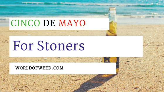 Celebrating Cinco de Mayo for Stoners