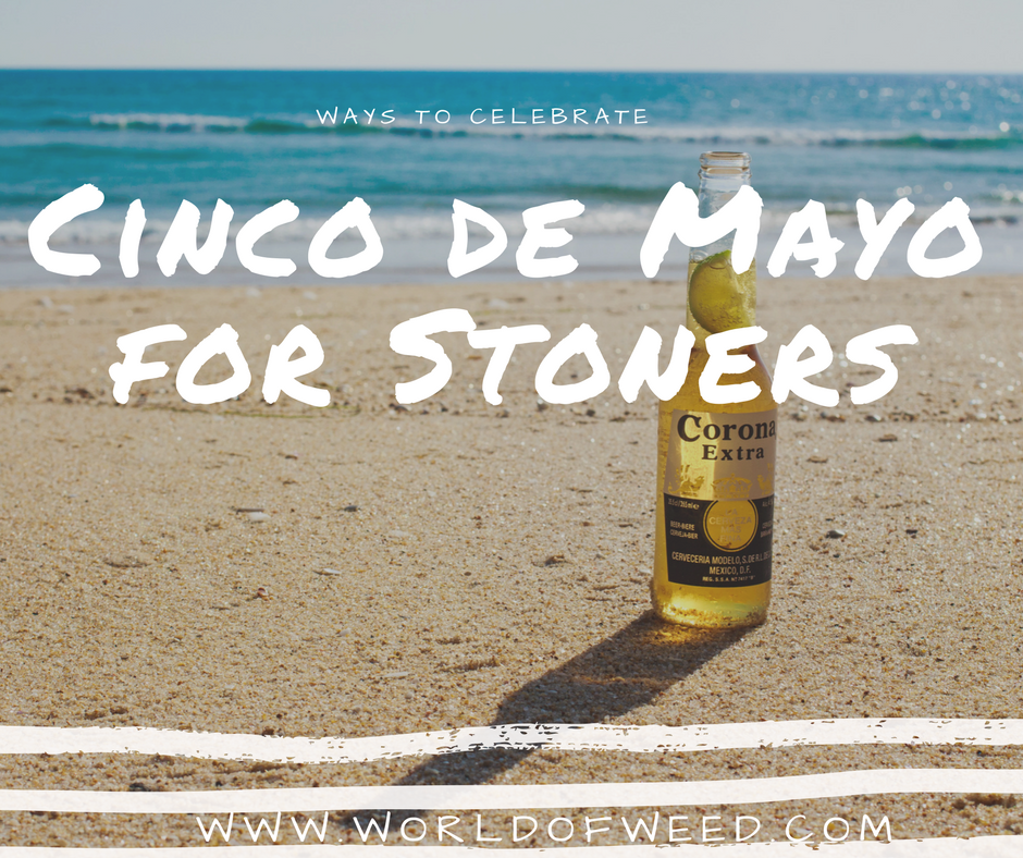 cinco de mayo for stoners , cannabis cinco de mayo , Tacoma dispensaries