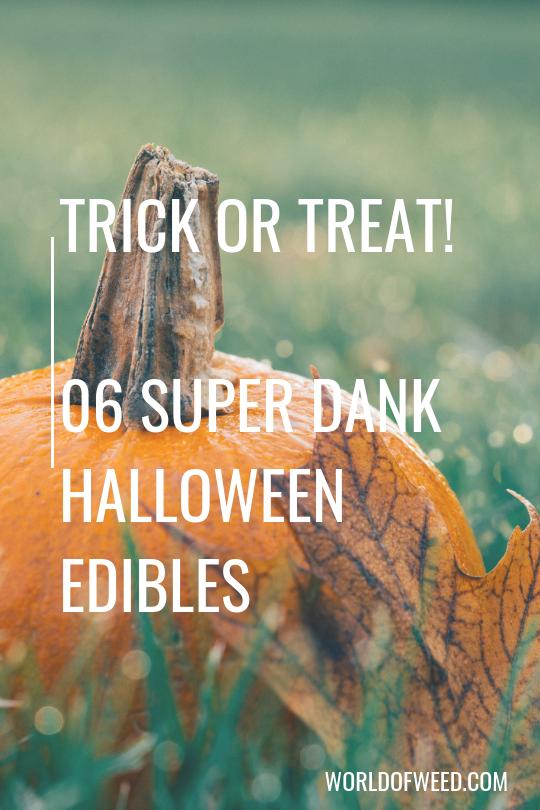 Trick or Treat!  6 Super Dank Halloween Edibles