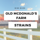 Get High on a Hog With Old McDonald's Farm Strains