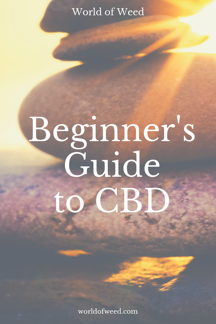 Cannabidiol Explained: The Beginner's Guide to CBD