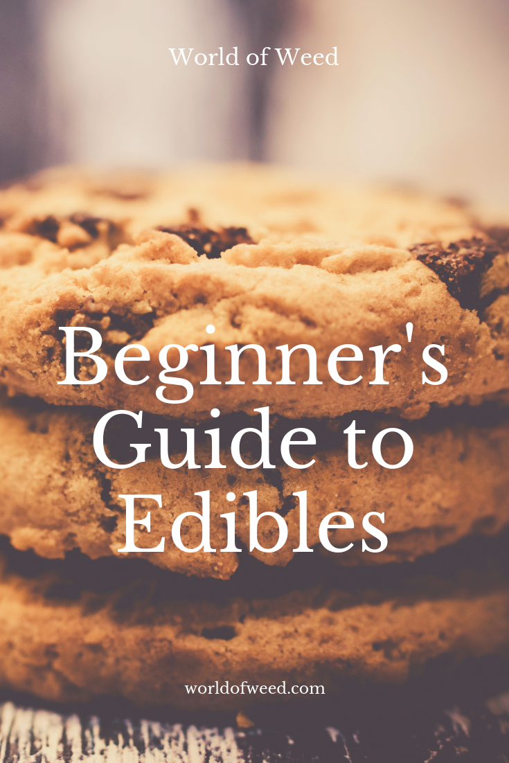 Beginner's Guide to Edibles