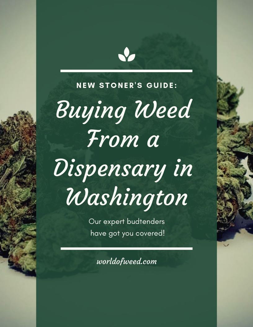 The New Stoner's Guide to Buying Weed From a Dispensary in Washington