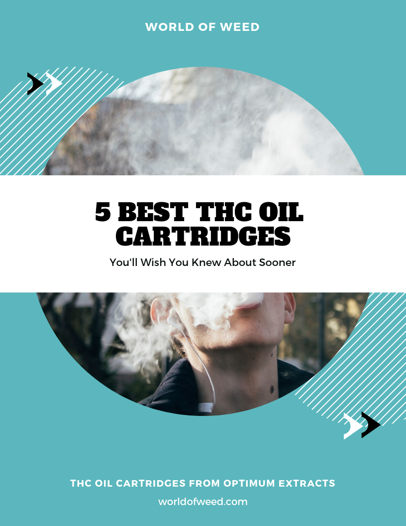 5 Best THC Oil Cartridges You'll Wish You Knew About Sooner