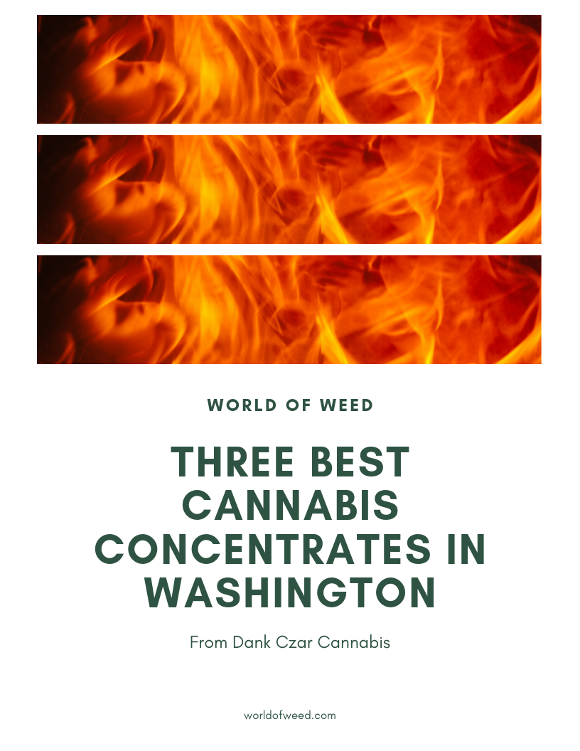 Three Best Cannabis Concentrates in Washington – From Dank Czar