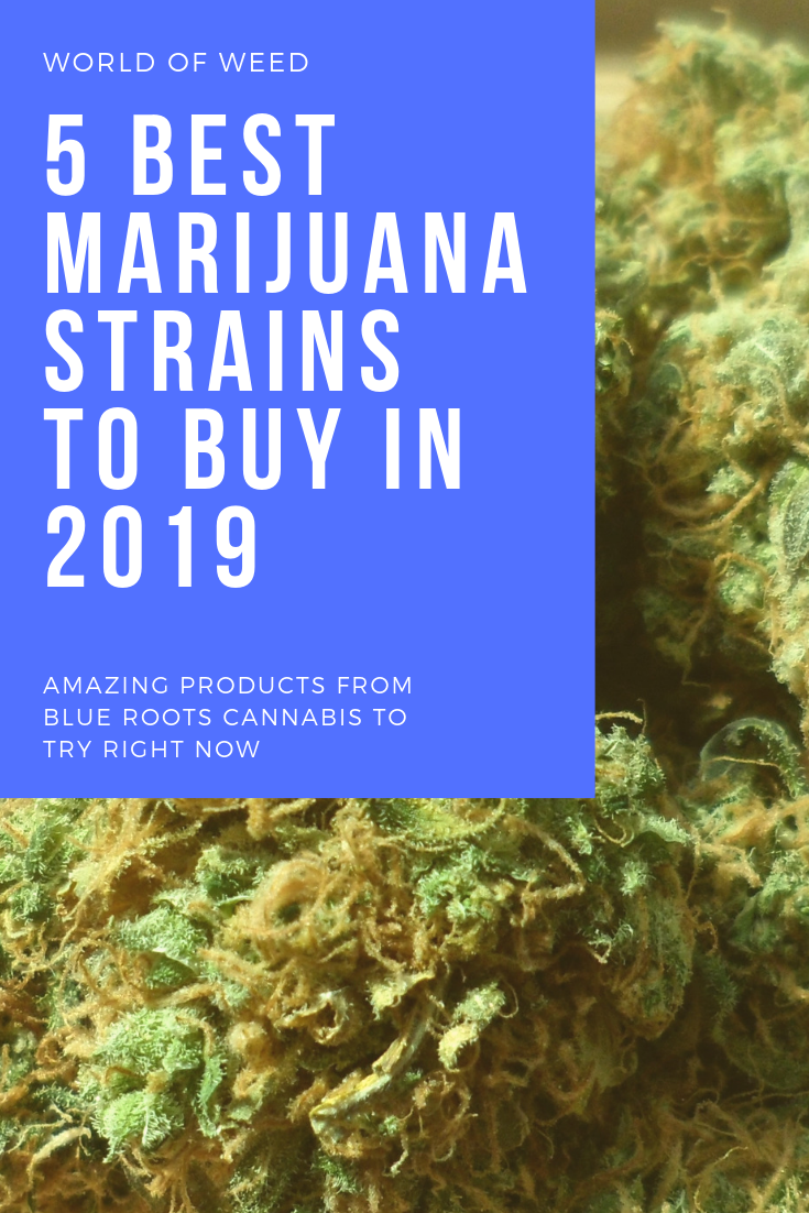 13 Amazing Blue Roots Cannabis Products to Try Right Now
