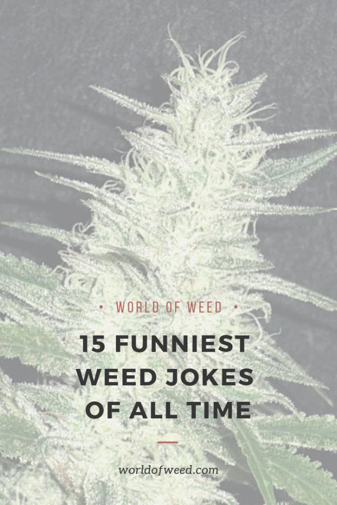 weed jokes, tacoma dispensary