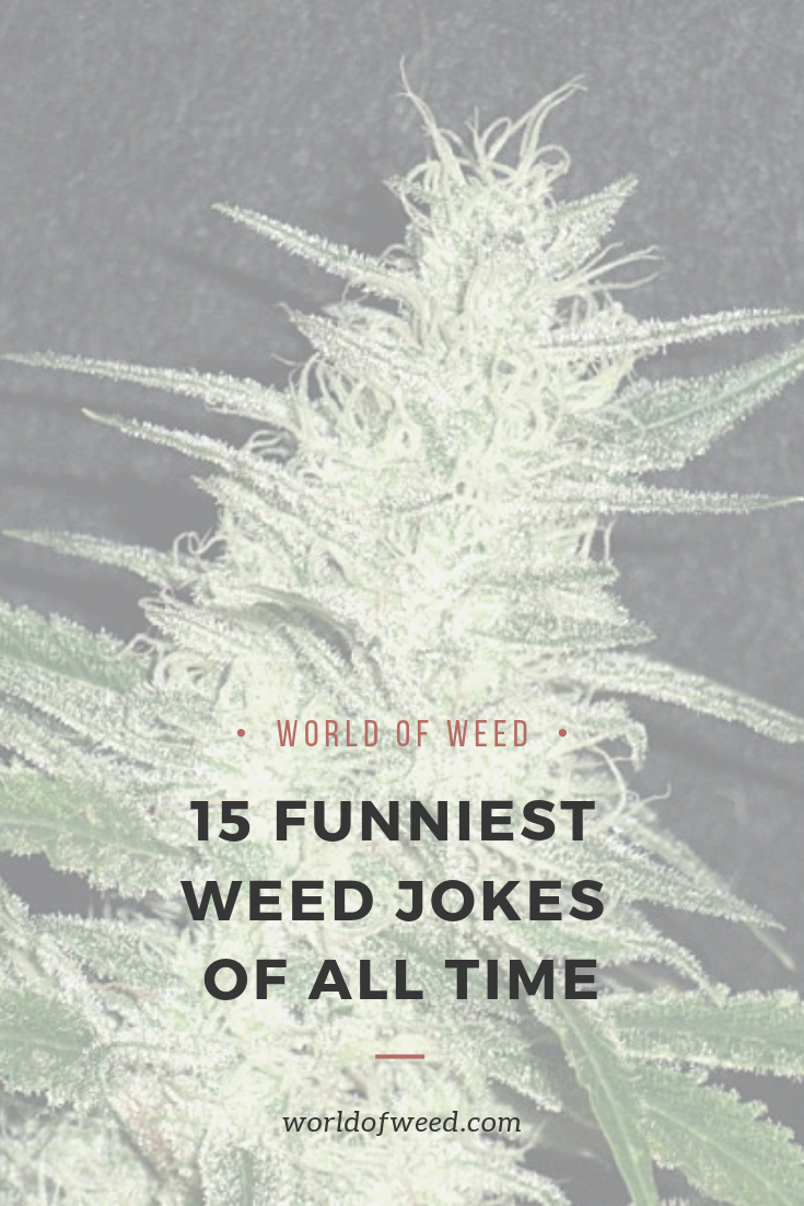 15 Funniest Weed Jokes of All Time