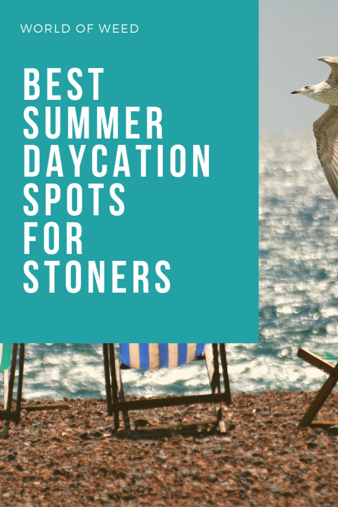 summer daycation spots, tacoma dispensary