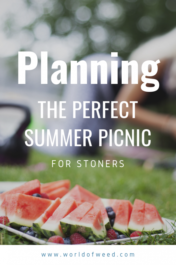 Tacoma dispensary, planning the perfect summer picnic for stoners