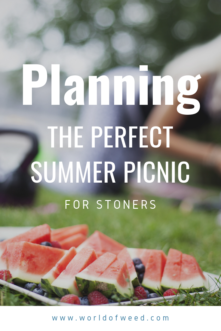 Planning the Perfect Summer Picnic for Stoners