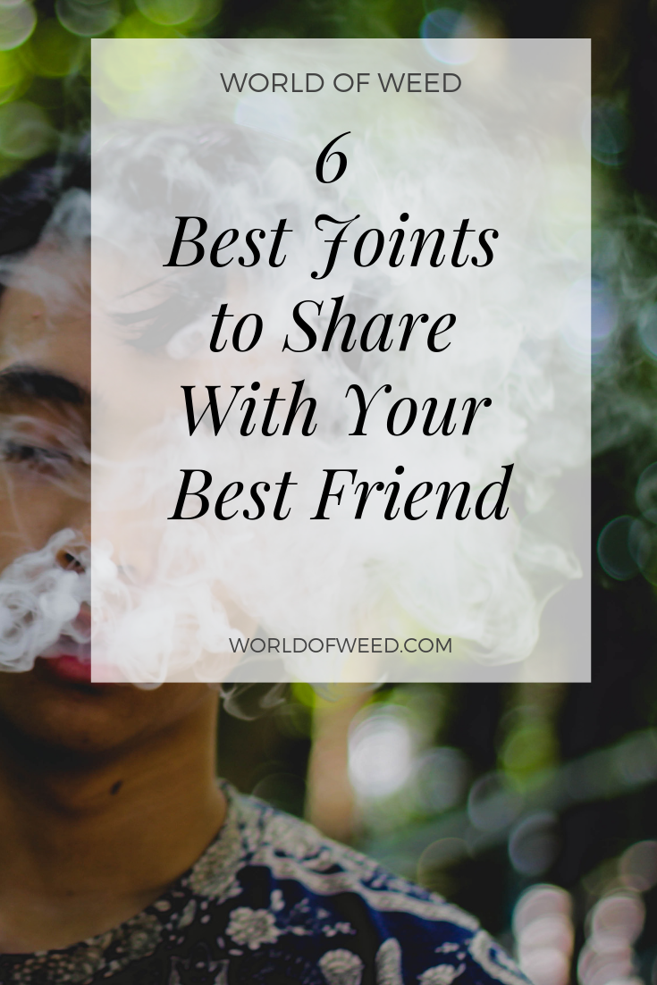 The 6 Best Joints to Share With Your Best Friend
