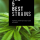 The 5 Best Marijuana Strains for Relaxation (Our 2019 Review)