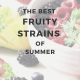 The Best Fruity Strains of Summer