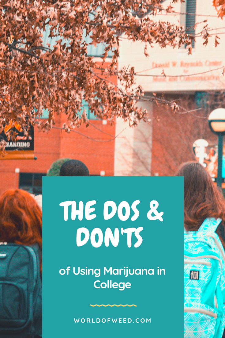 The Dos and Don'ts of Using Marijuana in College