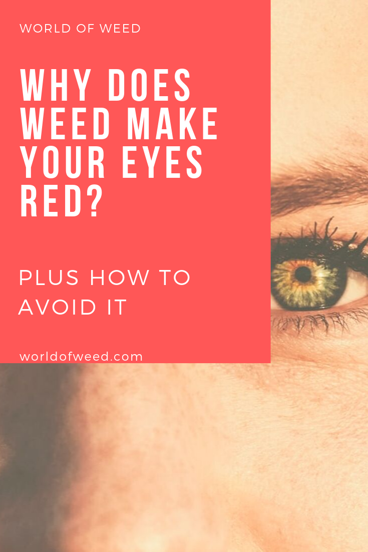 Why Does Weed Make Your Eyes Red? (PLUS: How to Avoid It)