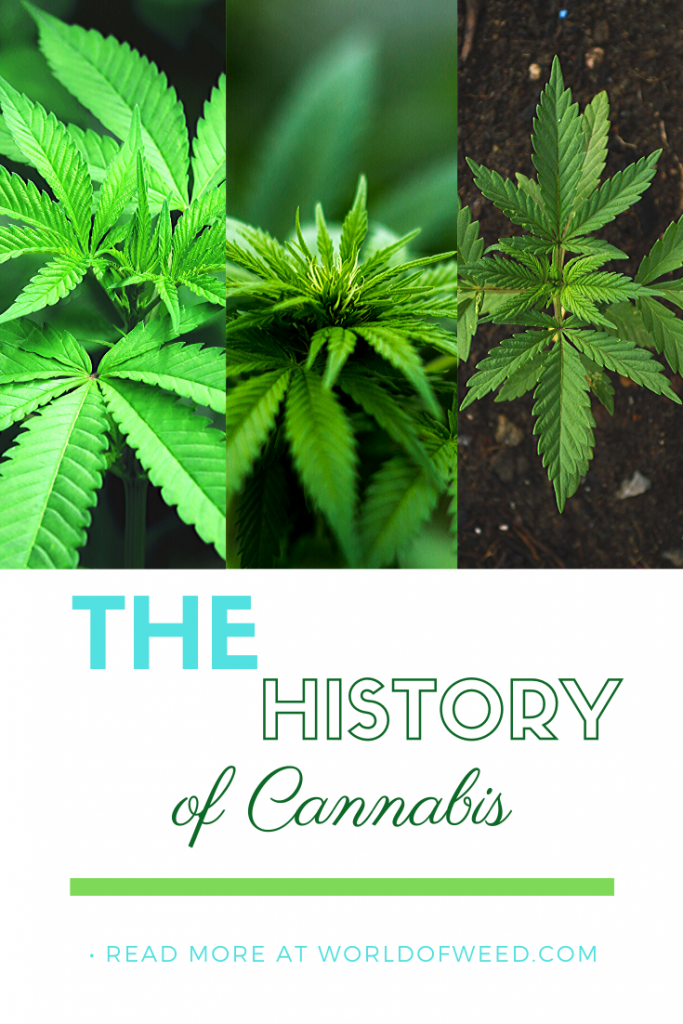 The HIstory of Cannabis by Tacoma dispensary World of Weed