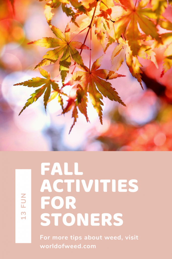 13 Fun Fall Activities for Stoners from Tacoma dispensary World of Weed