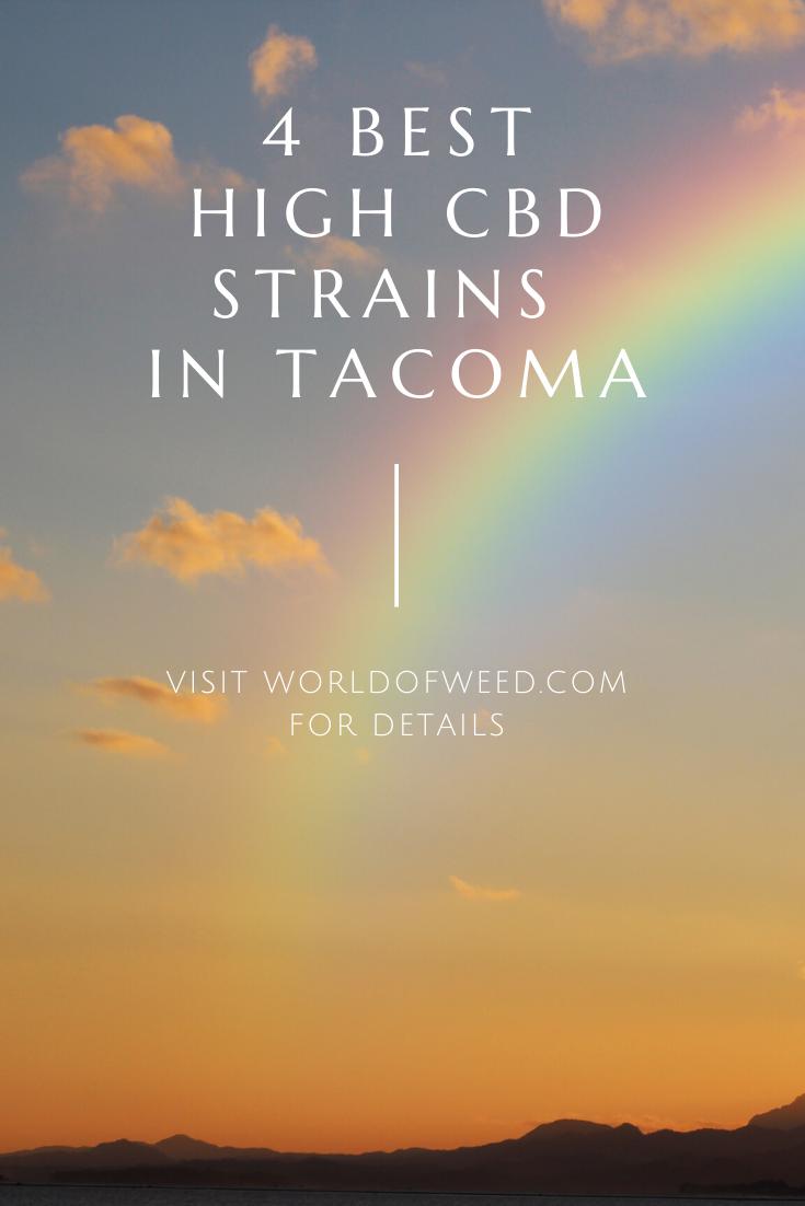 4 Best High CBD Strains in Tacoma