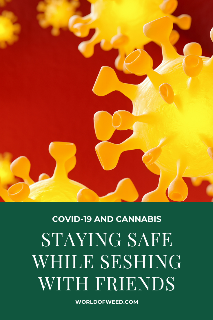 COVID-19 and Cannabis: How to Stay Safe While Seshing With Friends