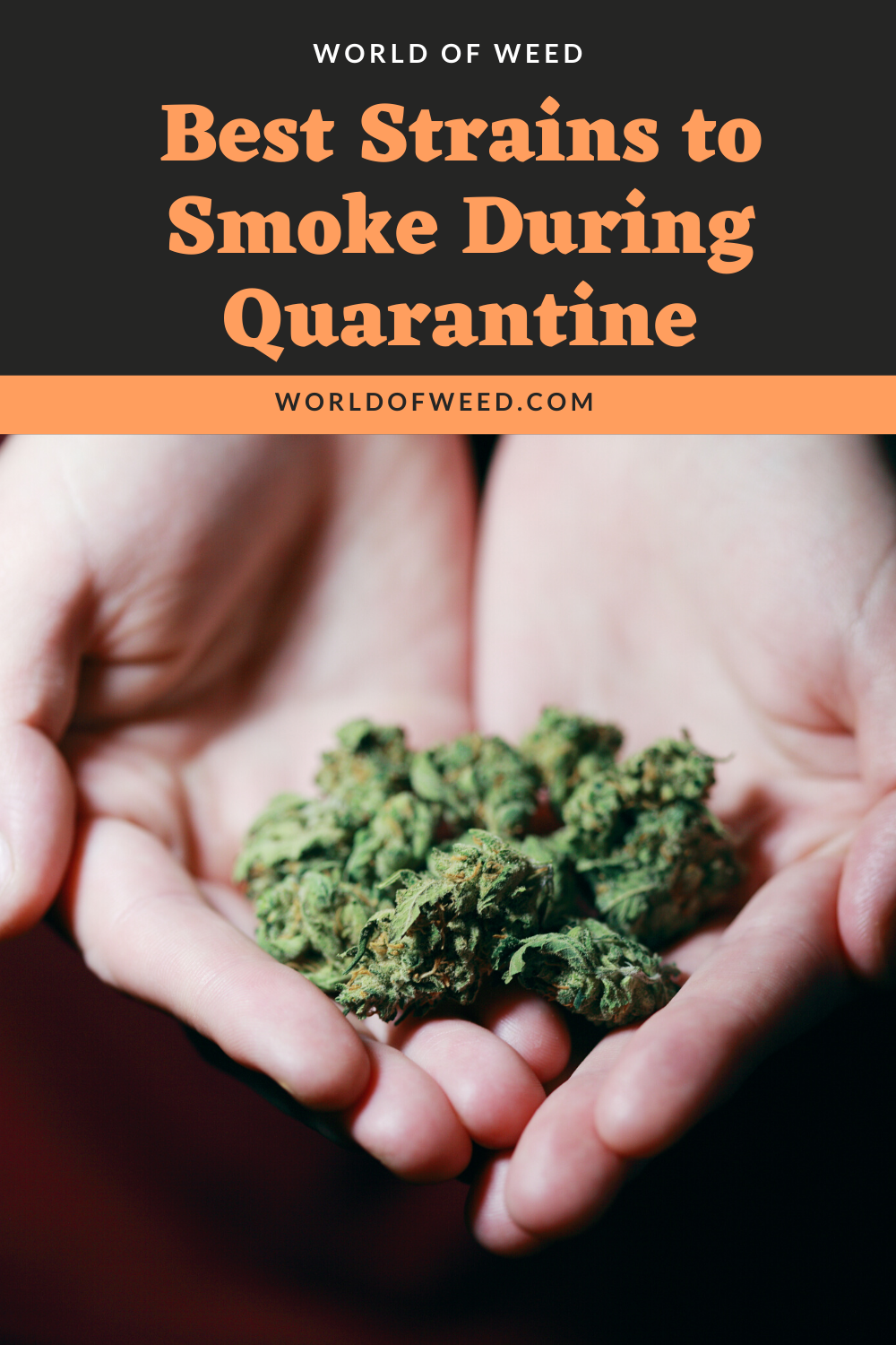 Best Strains to Smoke During Quarantine