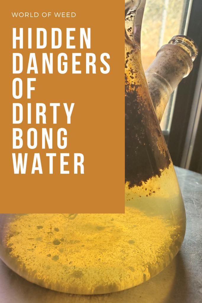 Hidden Dangers of Dirty Bong Water