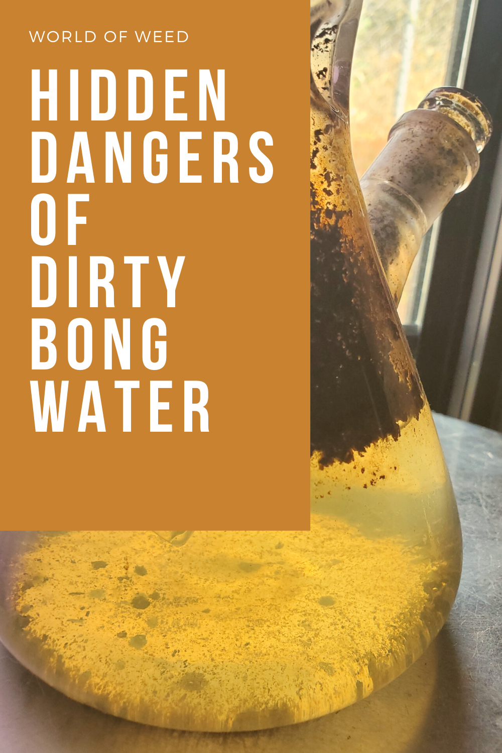 The Hidden Dangers of Dirty Bong Water