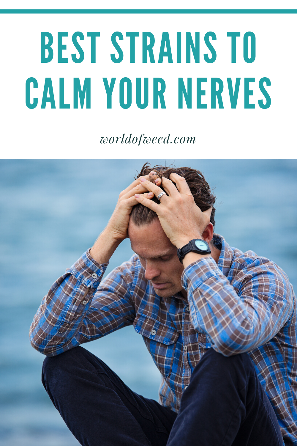 5 Best Strains to Calm Your Nerves