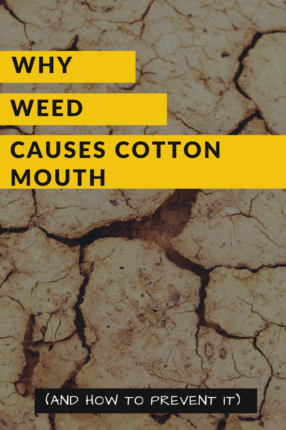 Why Weed Causes Cotton Mouth