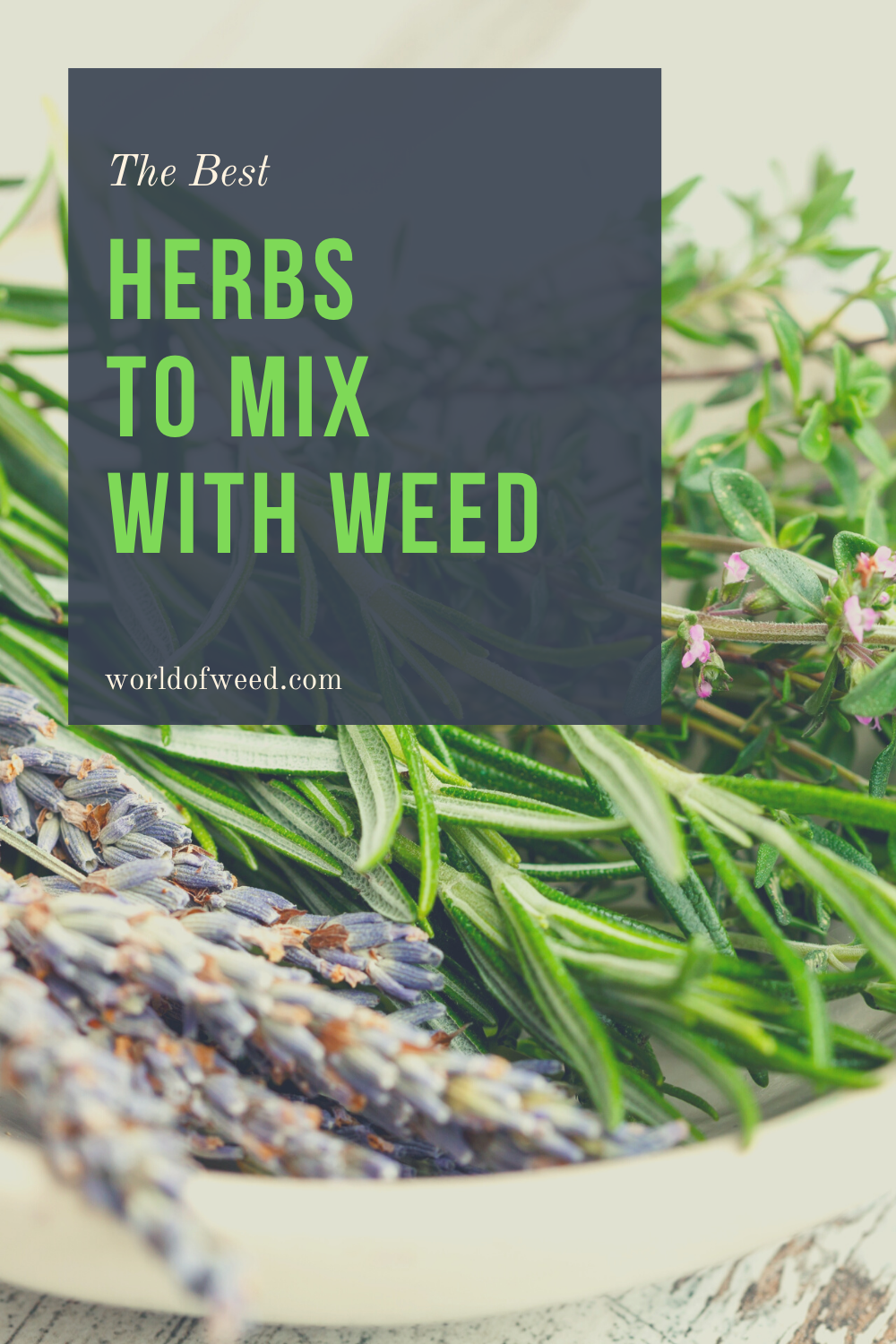The Best Herbs to Mix With Weed