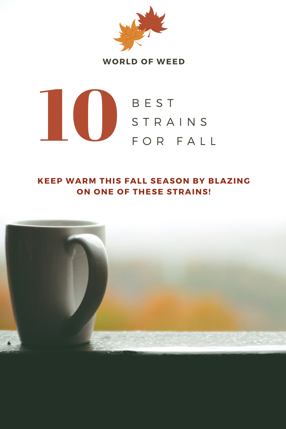 10 Best Fall Strains 2020