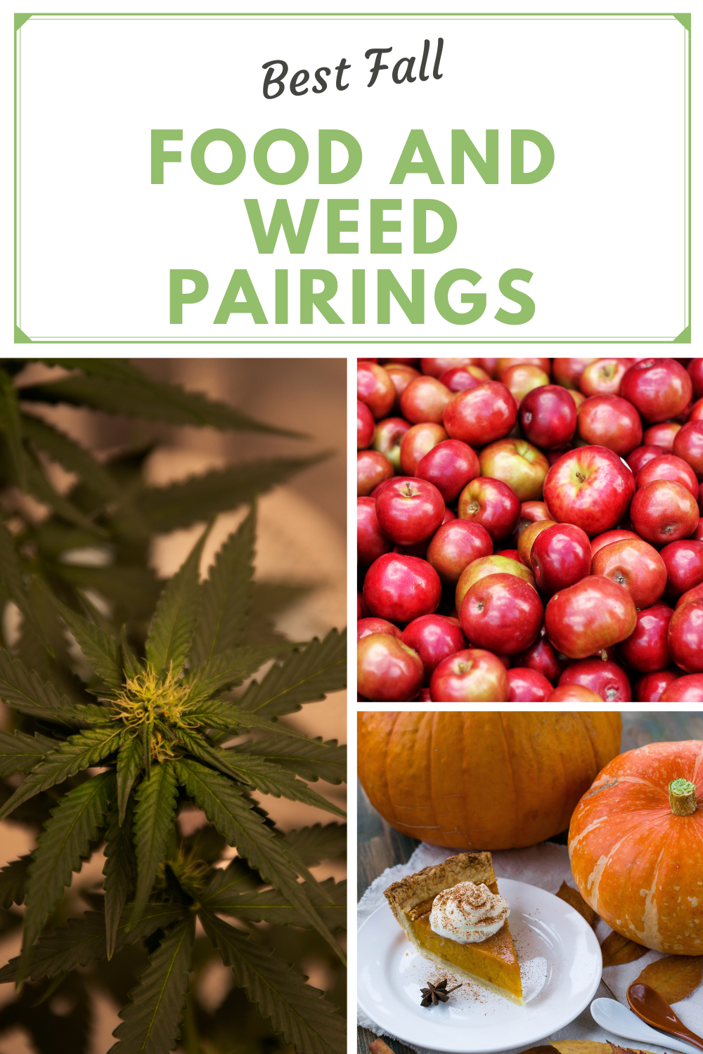 Best Fall Food and Weed Pairings