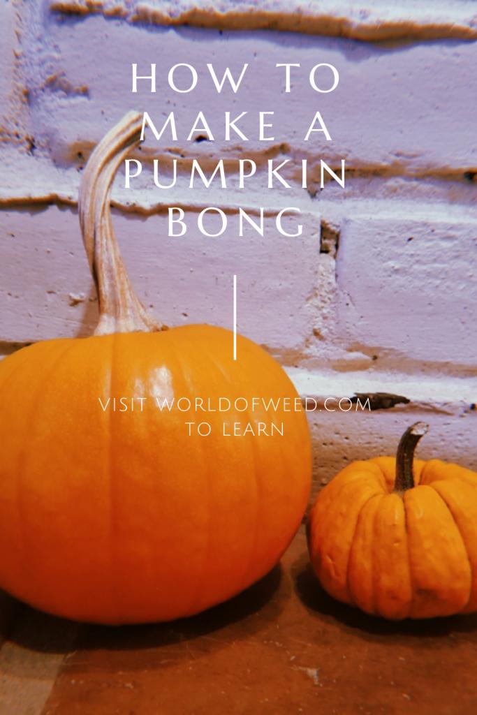 How to Make a Pumpkin Bong, Tacoma dispensary World of Weed