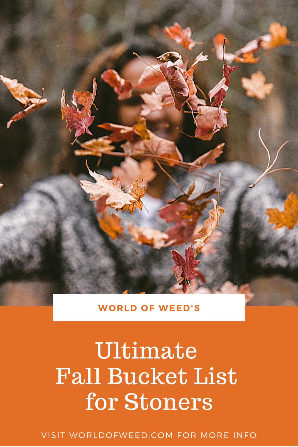 The Ultimate Fall Bucket List for Stoners