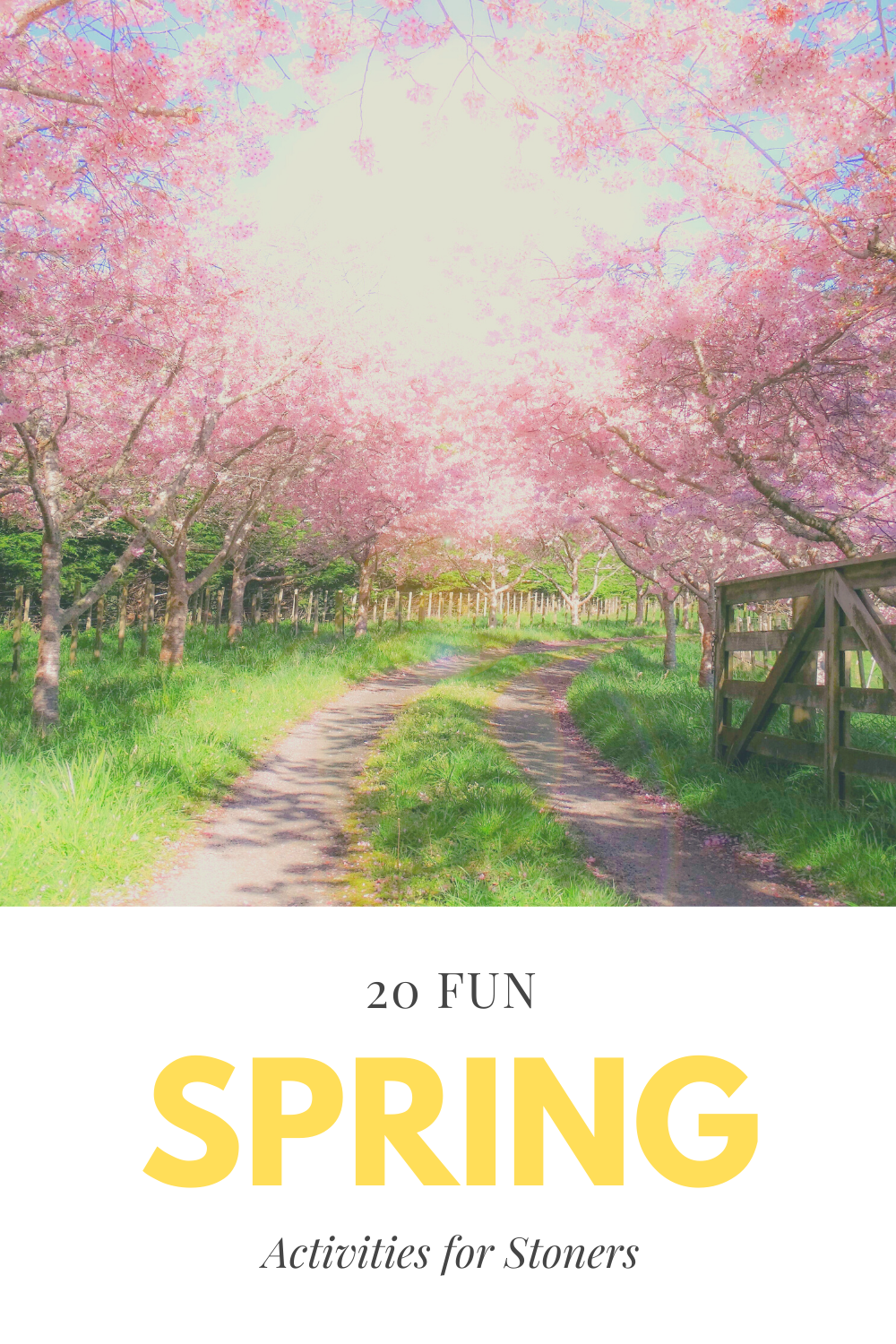 20 Fun Spring Activities for Stoners