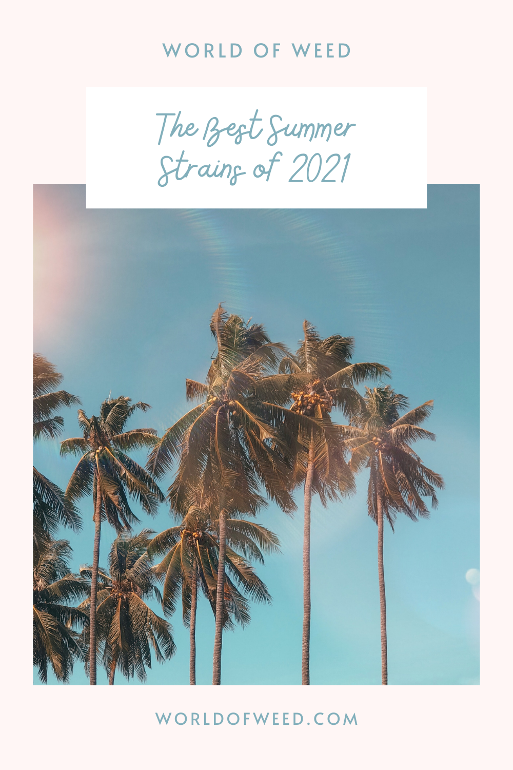 The Best Summer Strains of 2021